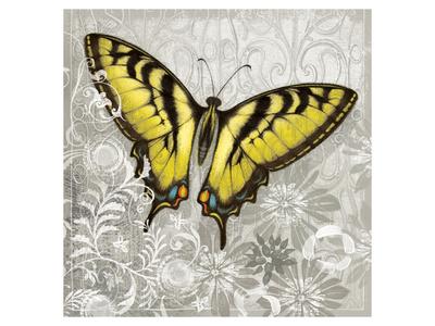 Yellow Butterfly Prints by Alan Hopfensperger
