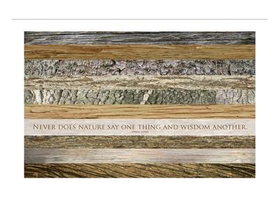 Nature's Wisdom (after Juvenal) Print