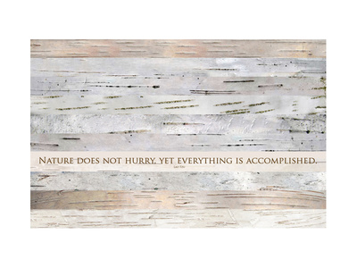 Nature does not hurry (after Lao Tsu) Prints