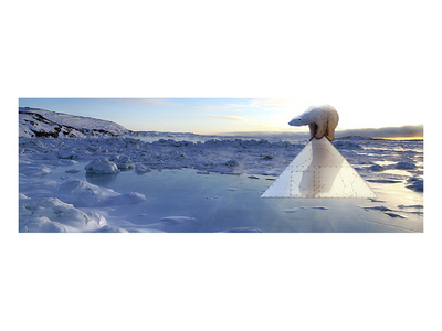Polar Bear Posters by Richard Desmarais