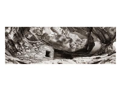 Fallen Roof Poster by Steve Munch