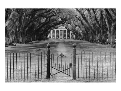 Oak Alley Plantation, Louisiana Posters