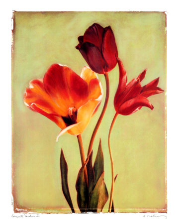 Concerto Verde II Prints by Amy Melious