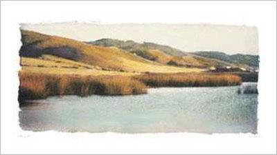 Estuary I 高品質プリント : エイミー・メリオウス