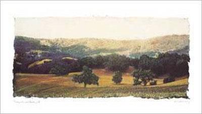ブドウ園とオークの木II 高画質プリント : エイミー・メリオウス