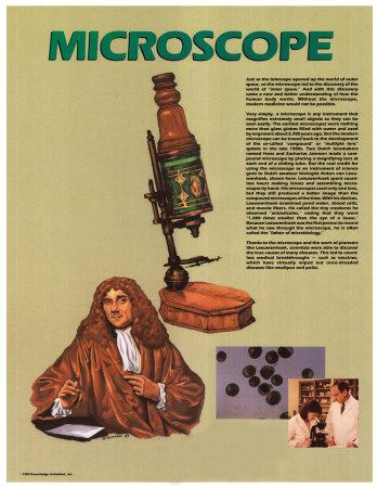 The Microscope Prints
