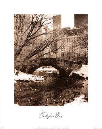 Central Park Bridge IV Prints by Christopher Bliss