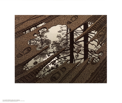 Puddle Poster by M. C. Escher