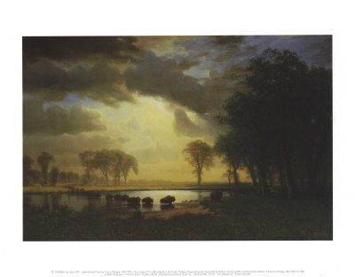 Buffalo Trail c.1867 Prints by Albert Bierstadt