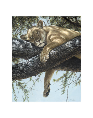 Lake Manyara Lioness Print by Guy Coheleach