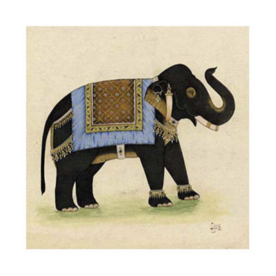 Elephant from India I Giclee Print