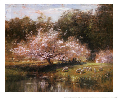 Sheep Grazing Under Apple Blossoms Art Print