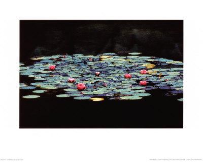 Untitled Prints by Martina Schroder