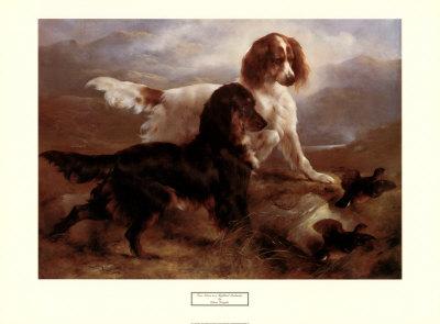 Two Setters in a Highland Landscape Prints by Edwin Douglas