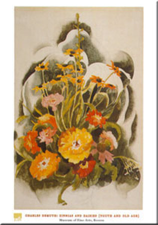 Zinnias And Daisies Reproduction d'art
