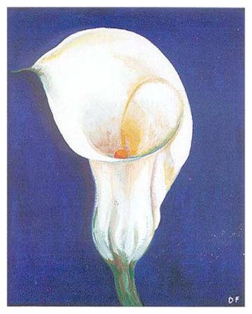 Iris I Prints by D. Ferrer