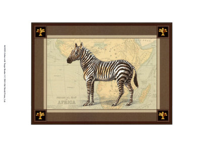 Zebra with Border I Prints