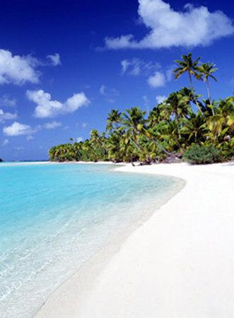 Palm Hideaway Bilder