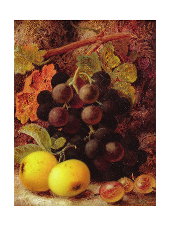 Grapes, Apples and Gooseberries Giclee Print by Vincent Clare