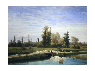 Pond with Ducks Giclee Print by Guglielmo Ciardi