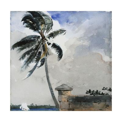 A Tropical Breeze, Nassau, 1889-90 Giclee Print by Winslow Homer