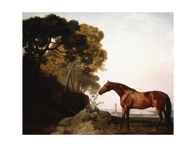 A Bay Arab in a Coastal Landscape, 1779 Giclee Print by George Stubbs