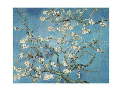 Almond Blossom, 1890 Premium Giclee Print by Vincent van Gogh