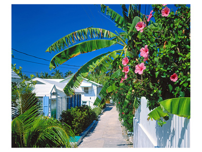 Small Clapboard House in Hope Town, Elbow Cay, Abaco Islands, Bahamas, Caribbean Poster