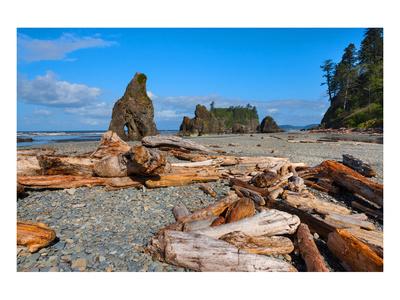 Ruby Beach at Olympic National Park, Washington, USA Prints