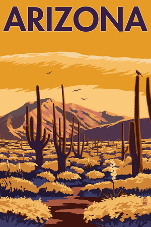 Arizona Desert Scene with Cactus Plastic Sign by  Lantern Press