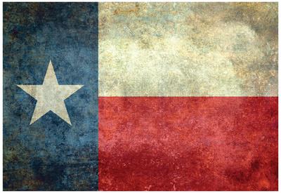 Texas State Flag Print