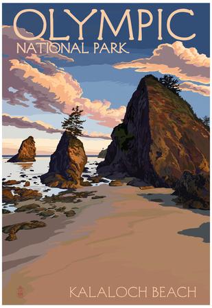 Kalaloch Beach - Olympic National Park, Washington Photo