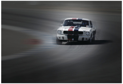 Mustang on the racing Circuit Posters by  NaxArt