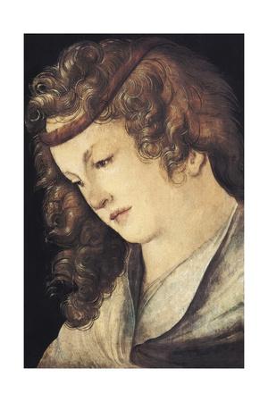 Head of a Woman Prints by Hans Leonard Schaufelein