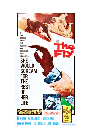The Fly Prints