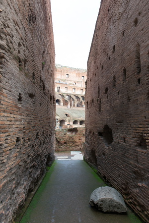 The Colosseum, UNESCO World Heritage Site, Rome, Lazio, Italy, Europe Photographic Print by  Carlo