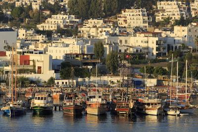 Boats in Bodrum, Turkey, Anatolia, Asia Minor, Eurasia Photographic Print by  Richard