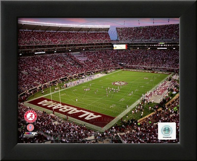 Bryant Denny Stadium University of Alabama 2010 Posters