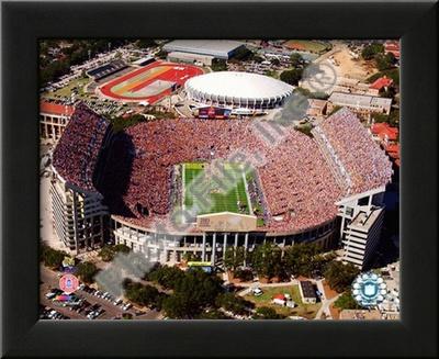 Tiger Stadium - LSU Print