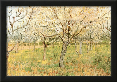 Orchard in Blossom Prints by Vincent van Gogh