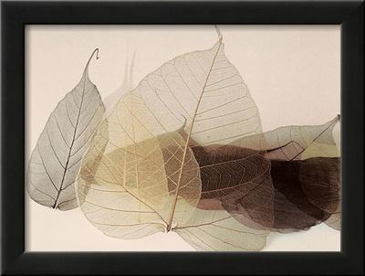 Chablis Art by Durwood Zedd