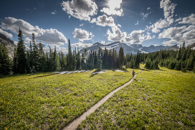 A Young Woman Trail Running in Glacier National Park, Montana Photographic Print by Steven Gnam