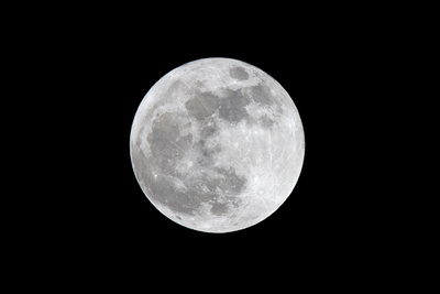 The May 2012 Òsupermoon,Ó Photographed from Los Angeles, California Photographic Print by Neil Losin