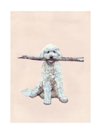 Playful Pups II Photographic Print by Debbie Nicholas