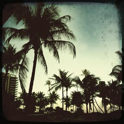 Miami Vintage I Giclee Print by Tony Koukos