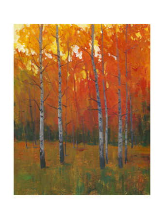 Changing Colors I Art by Tim O'toole