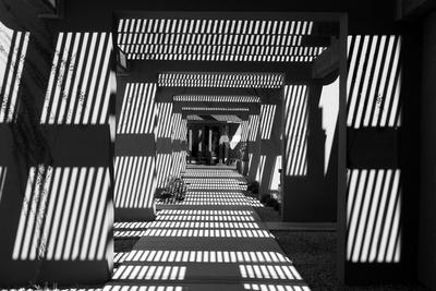 Black and White Walkway Scottsdale Arizona Photo