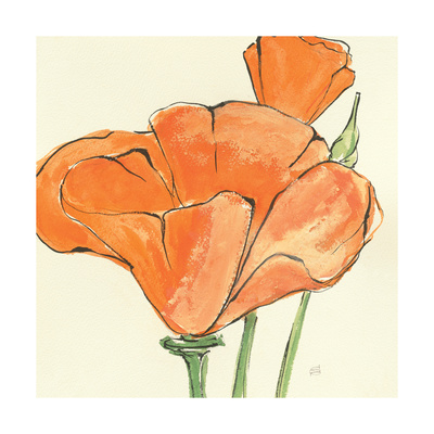 Sunshine Poppy IV Prints by Chris Paschke