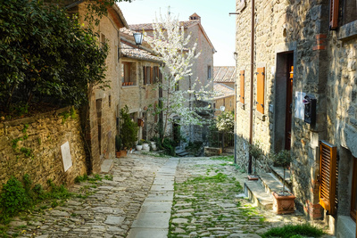 Italian Old Street . Tuscany Photographic Print by  ZoomTeam