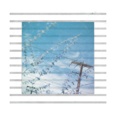 Telephone Pole Prints by Ashley Hutchins